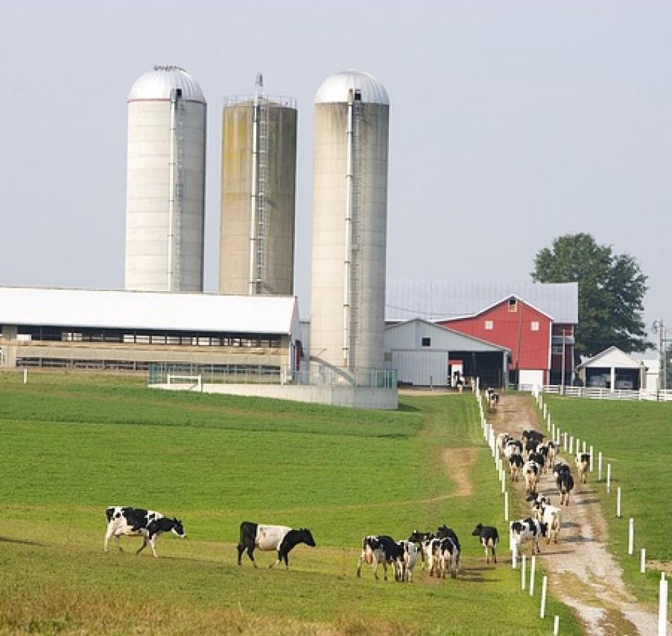 Robustos, potentes y resistentes a la atmósfera polvorienta, los motores Modec cumplen muchas funciones en la industria agrícola