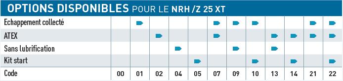 Option disponible pour le moteur pneumatique NRH25XT NRZ25XT