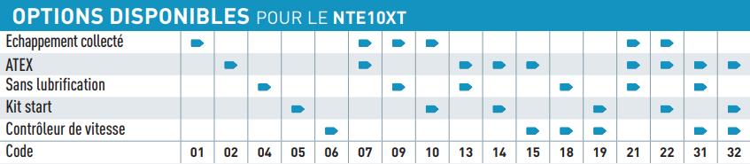 Option disponible pour le moteur pneumatique NTE10XT