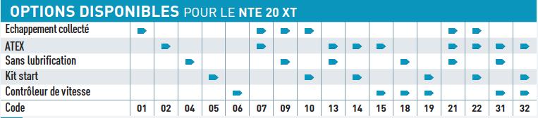 Option disponible pour le moteur pneumatique NTE20XT