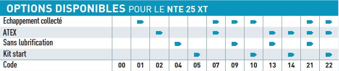 Option disponible pour le moteur pneumatique NTE25XT