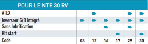 Option disponible pour le moteur pneumatique NTE30RV