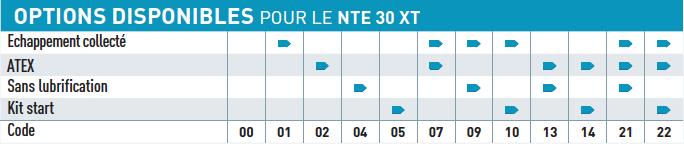 Option disponible pour le moteur pneumatique NTE30XT
